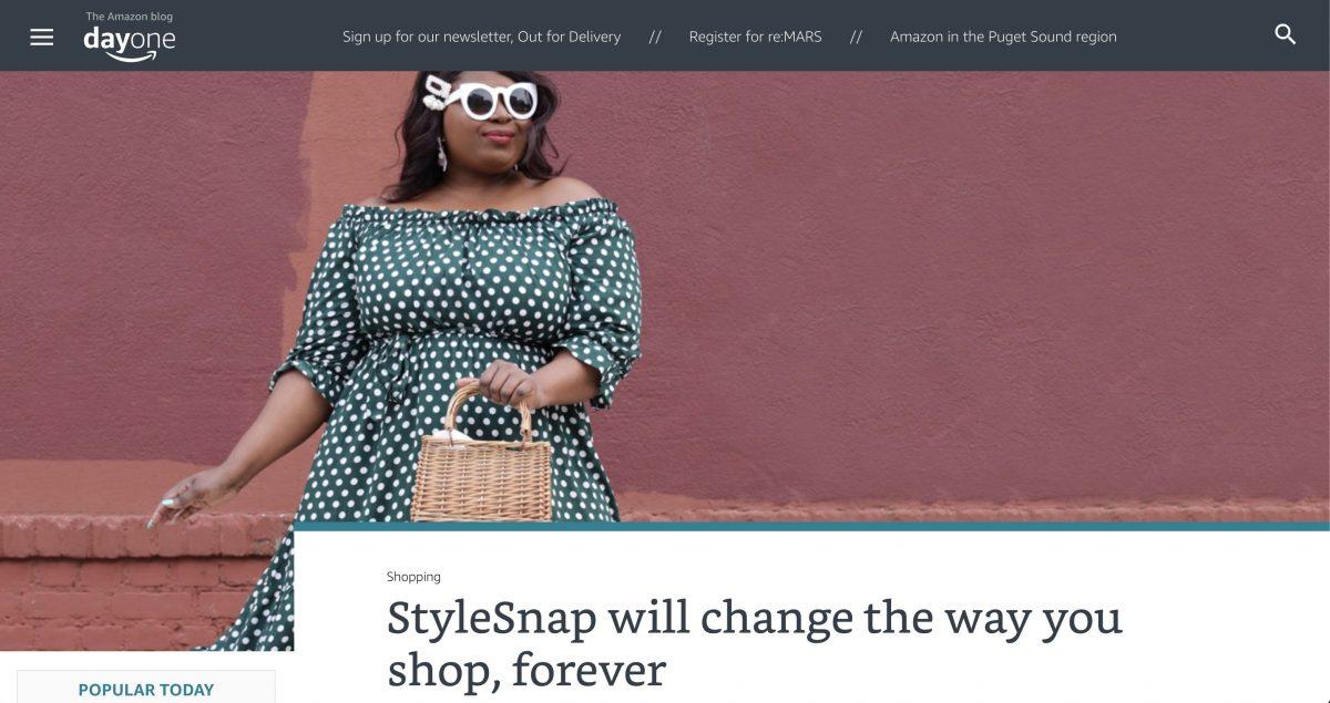 stylesnap
